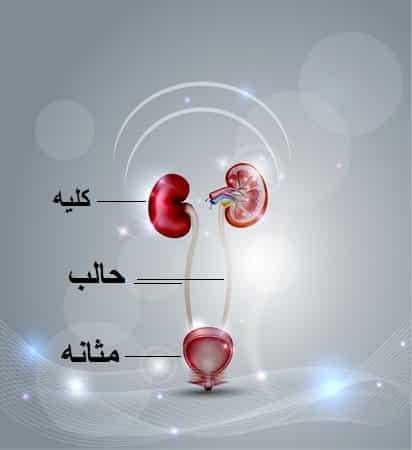 درمان مشکلات حالب دارو تغذیه جراحی